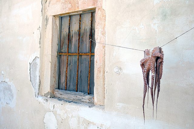 Octopus suspended on a line in Naxos, Greece.