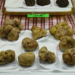 World's most expensive foods - Alba white truffles