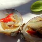 Chocolate clams Escabeche.