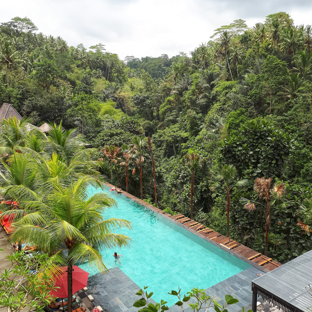 The infinity pool at Jungle Fish Bali hangs over an impressive gorge.